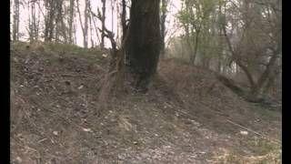 folyók, állóvizek  Apáczai Kiadó - YouTube