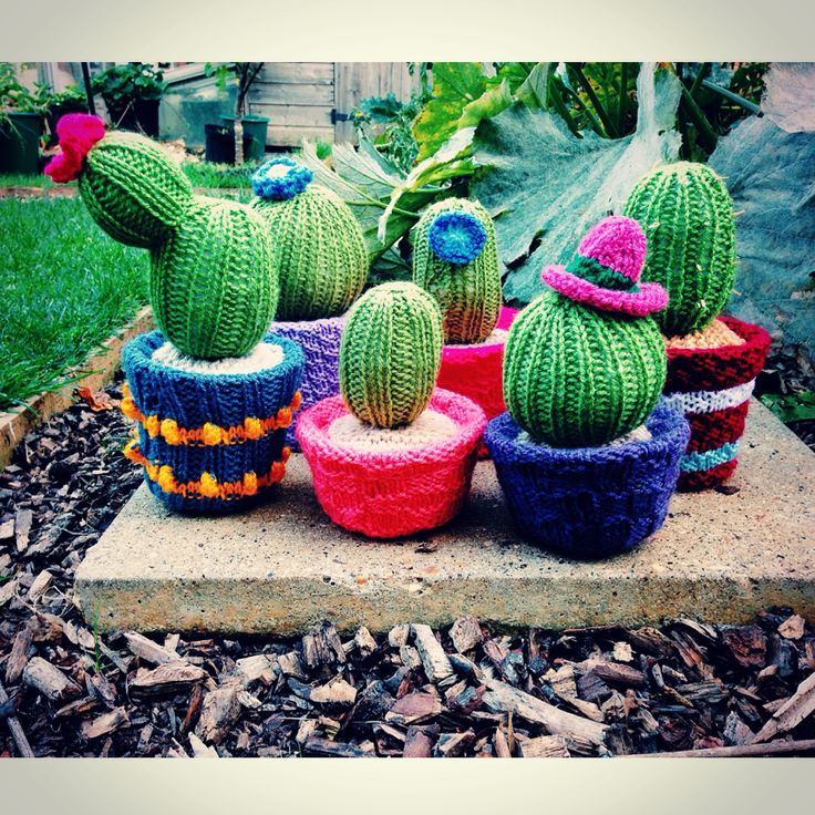 Knitted Cacti by Jenna Lee Alldread