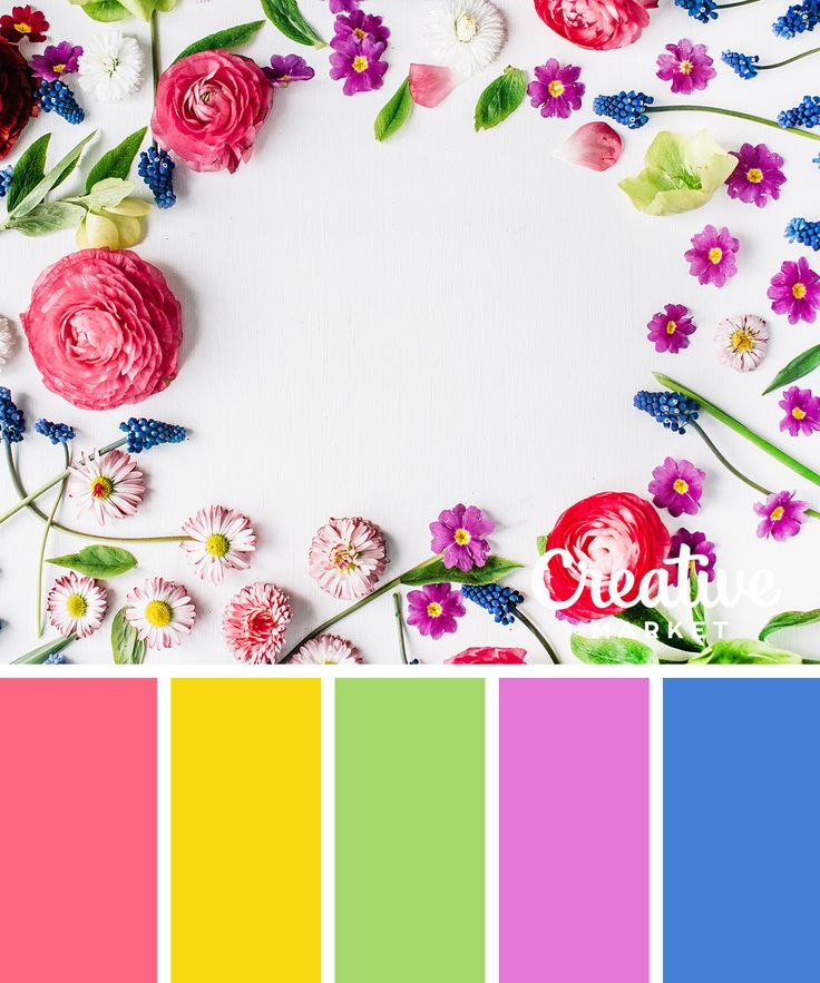 25 Best Spring Color Palette Ideas On Pinterest