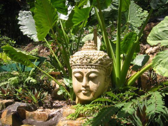 "Bali garden statue - BBC Boracay says: "" Amazing setting in front of giant elephant ears plants..."""