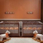 Modern Nursery for Twin Boy's