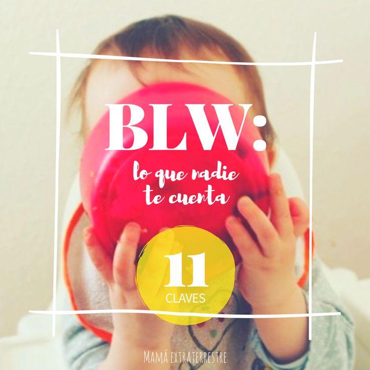 BLW baby led weaning lo que nadie te cuenta claves secretos verdad