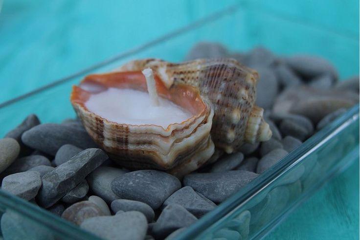 Купить Подсвечники из морских ракушек - ракушки морские, ракушка, ракушки, Свечи, свеча, подсвечник, подсвечники