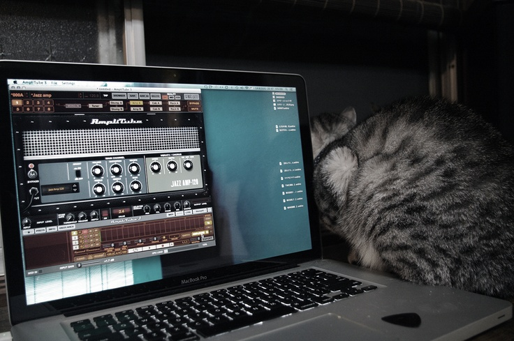 NI+Mac+Cat=?
