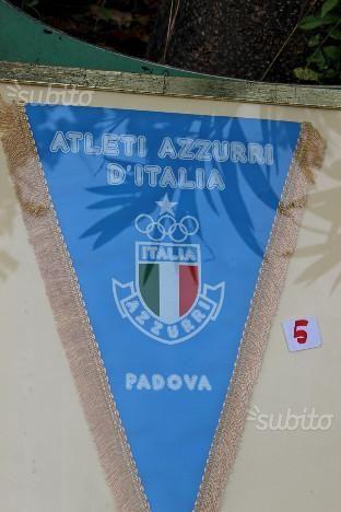 gagliardetto-italia-forza-azzurri