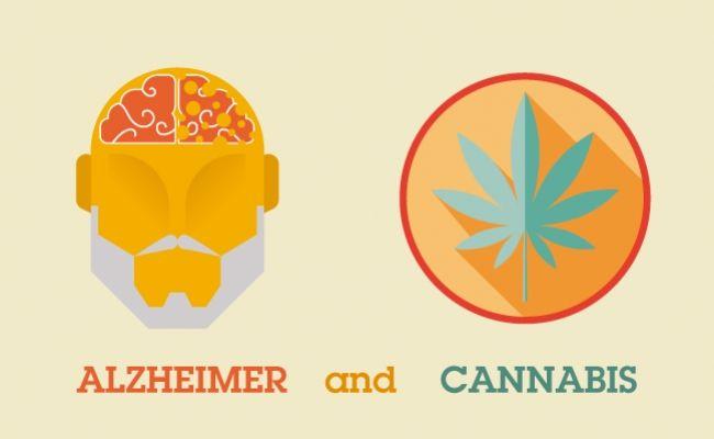 Salutem Natura: ¿Puede ser el cannabis la solución al Alzheimer?