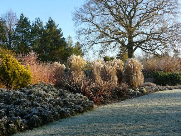 Scenic  Best Images About Landscaping Winter On Pinterest  Gardens  With Entrancing Hilliergarden With Attractive Gold Hatton Garden Also Hire A Gardener In Addition Ornamental Animals For The Garden And Lost Gardens Of Heligan Opening Times As Well As Garden Centre Telford Additionally Botanical Gardens Sheffield Weddings From Pinterestcom With   Entrancing  Best Images About Landscaping Winter On Pinterest  Gardens  With Attractive Hilliergarden And Scenic Gold Hatton Garden Also Hire A Gardener In Addition Ornamental Animals For The Garden From Pinterestcom