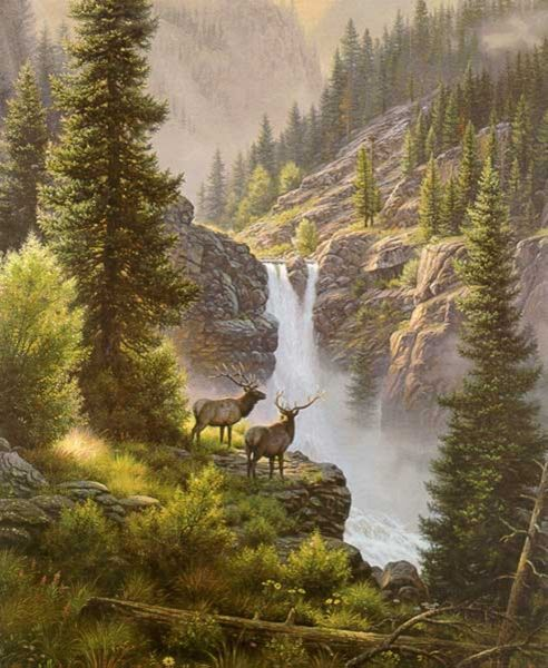 Rivals in the Mist  by Mark Keathley