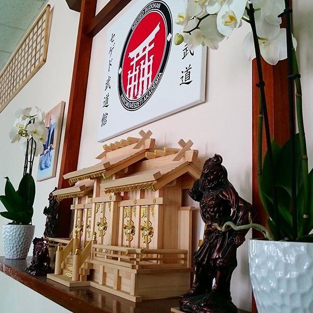 Peaceful morning in the dojo ❄ Merry Christmas! // Egy békés reggel a dojoban ❄ Boldog Karácsonyt! #szegedbudokan #martialarts #academy #szeged #budokan #christmas #morning #dojo #shomen #kamidana #home #harcművészet #merry #peace #harmony #inspiration #motivation #budo #warrior #samurai #spirit