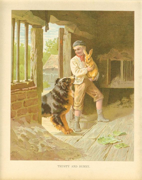Edwardian 1900s Ernest Nister Antique Childrens Print Boy Holding Rabbit Barn Outhouse Black And Tan Collie Dog Looking Up Book Plate
