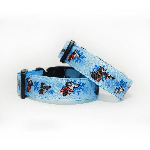 Obojky Blackberry *Zimní kolekce* | Collars by Blackberry *Winter collection* #collar #winter #dog #blackberry #blue #pes #zimni_kolekce #modra #obojek