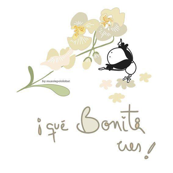 Muxote Potolo Bat (@muxotepotolobat) | Twitter                                                                                                                                                                                 Más