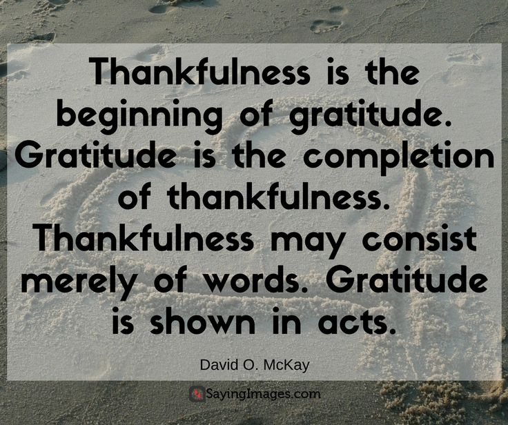 Thankful Quotes Inspirational: 14 Best Images About Thank You Quotes On Pinterest