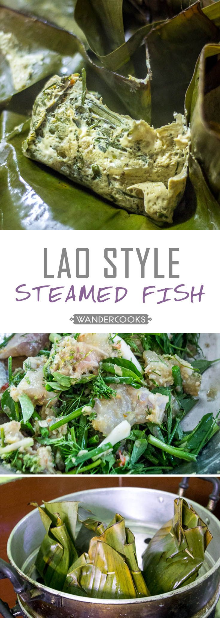 Lao Steamed Fish - Bursting fresh from the banana leaf, this flavour infused fish is melt-in-your-mouth goodness. Gluten free. | wandercooks.com