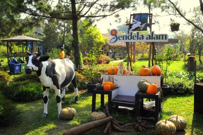 Jendela Alam - Kids Holiday Spots - Liburan Anak