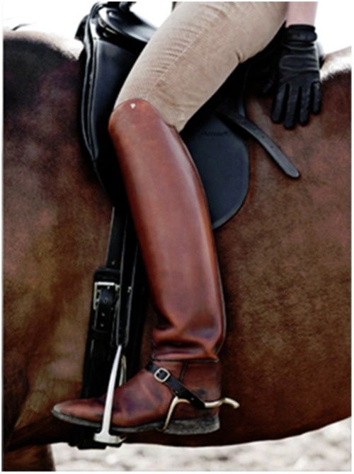 I'm in love with DeNoir dressage boots. $670 sounds like another number to me. Got to have these boots!