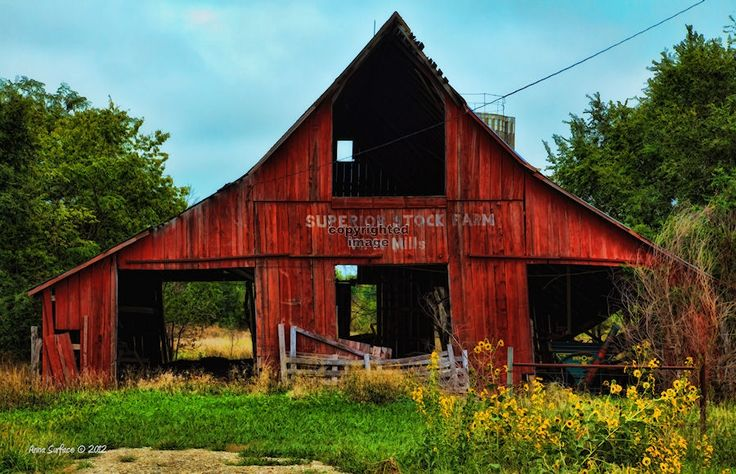Old Red Barn | Old Red Barn and Wild Sunflowers » Kansas Photography Journal Archive