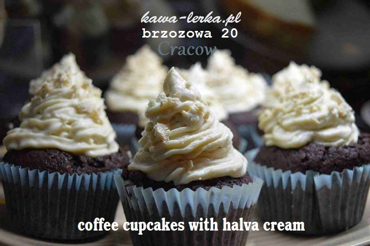 coffee cupcakes KawaLerka brzozowa 20 street in cracow. the best sweet in cracow. https://www.facebook.com/Kawalerka-1460346290884277/