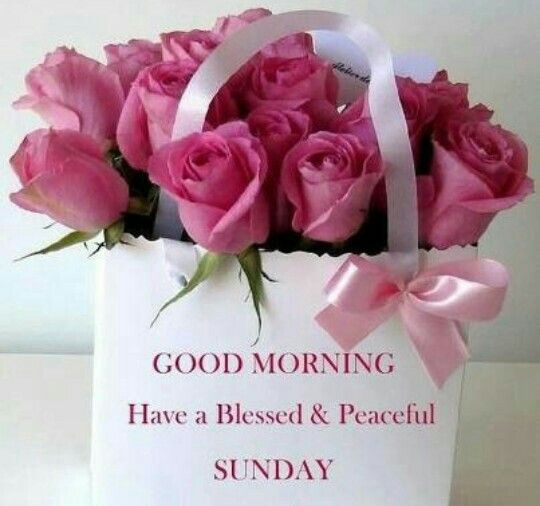 Have A Blessed Sunday Quotes Quote Days Of The Week Sunday Sunday Quotes  Happy Sunday Its Sunday