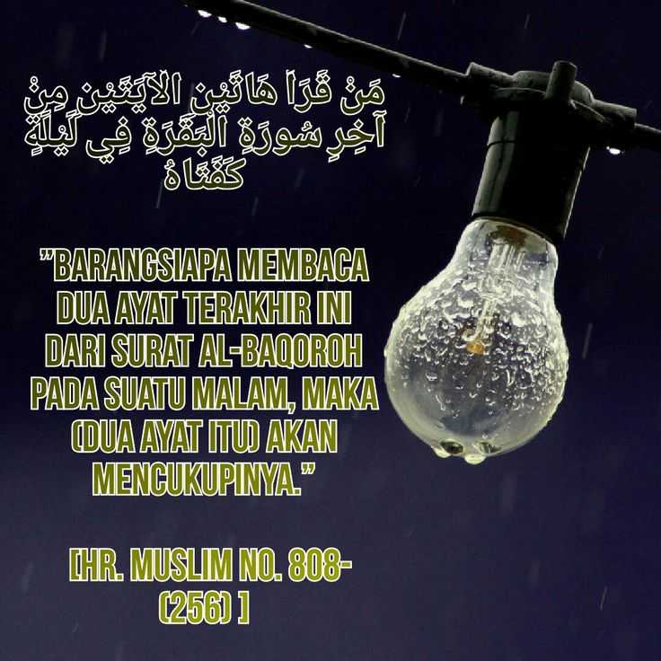 #islam #alquran #albaqarah #quote #muslim