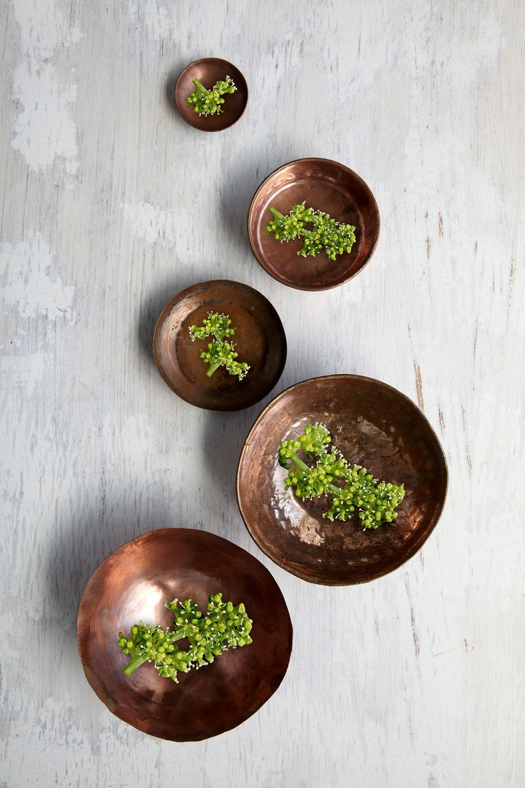 Garden Design Magazine Gvine Spheres on