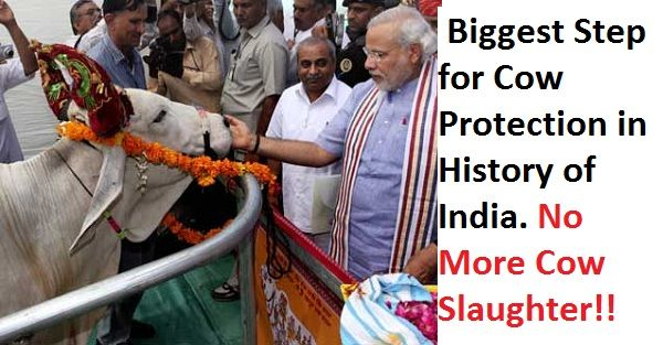 namo-with-cow3http://namopress.com/2017/05/26/breaking-surgical-strike-on-cow-slaughter-complete-ban-on-cow-slaughter-across-india-from-today/