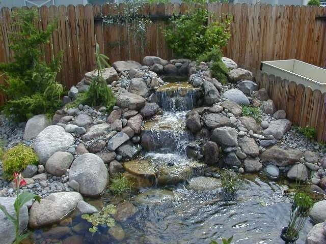 Water feature with pond and plants nevada water gardens for Pond water features waterfalls