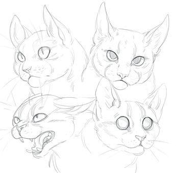 Cat doodles by SHADE-ShyPervert.deviantart.com on @DeviantArt