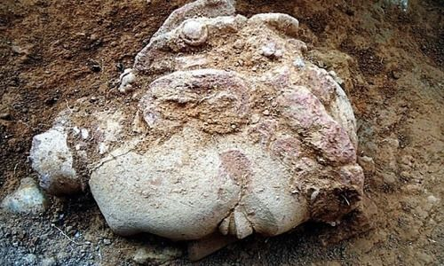 'World's oldest' 48-feet long Buddha statue unearthed in Haripur district - Pakistan - DAWN.COM https://www.dawn.com/news/1370905/worlds-oldest-48-feet-long-buddha-statue-unearthed-in-haripur-district