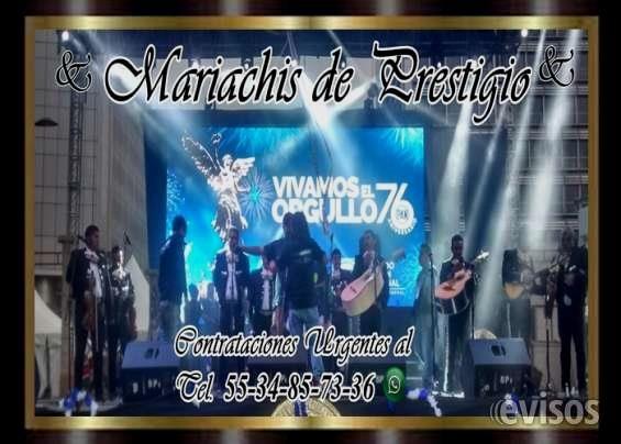 Mariachis Economicos En Alvaro Obregon Urgentes Mariachis 5534857336  Mariachis economicos en alvaro obregon - urgentes mariachis en alvaro obregon - telefono de ...  http://alvaro-obregon.evisos.com.mx/mariachis-economicos-en-alvaro-obregon-urgentes-mariachis-5534857336-id-616251