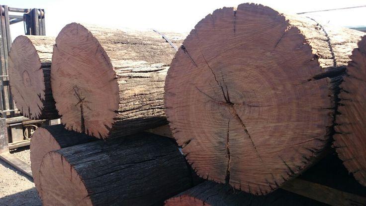 Big wood...timber rounds.