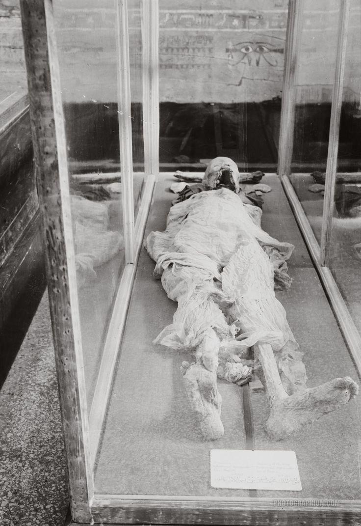Pharaoh's Mummy in Cairo Museum: Cairo, Egypt 1900-1920