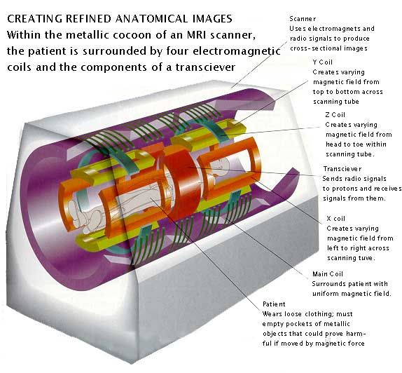 How Magnetic Resonance Imaging  (MRI) Works