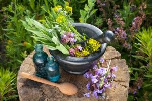 Herbal Supplements for Treating PCOS (Expert interview) - PCOS Diva