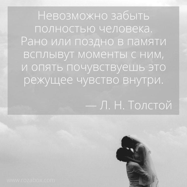 цитата фотографии как память сорта