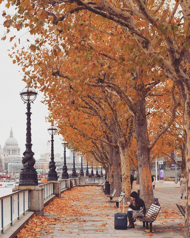 Most Beautiful Places in London in Autumn