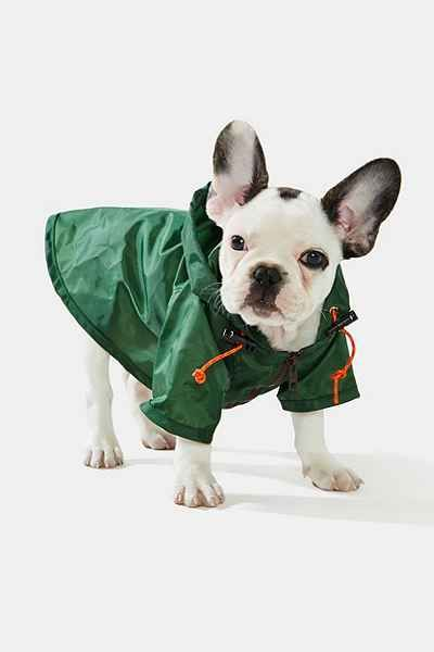 FRENCHIE RAINCOAT