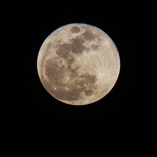 Another one  #supermoon #bluemoon #moon #photography #telescope