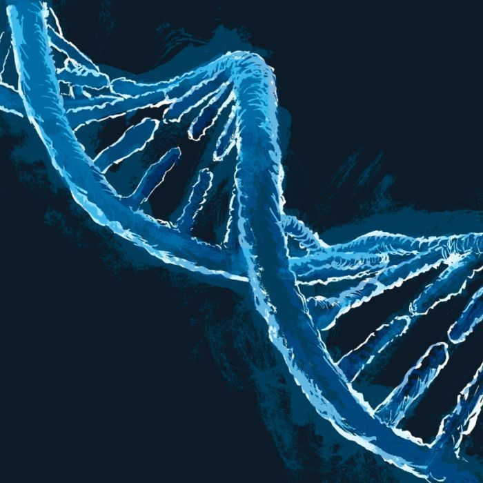 #Australian patients to get access to genome tests used to diagnose rare genetic disease - ABC Online: ABC Online Australian patients to…