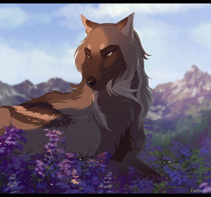 742 best Anime Wolves ...