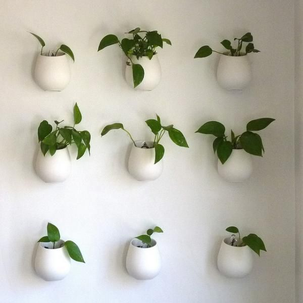 Best 25+ Indoor pots and planters ideas on Pinterest | Indoor ...