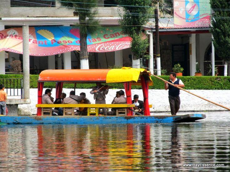 Mariachis   Xochimilco's Floating Gardens   www.bayessence.com