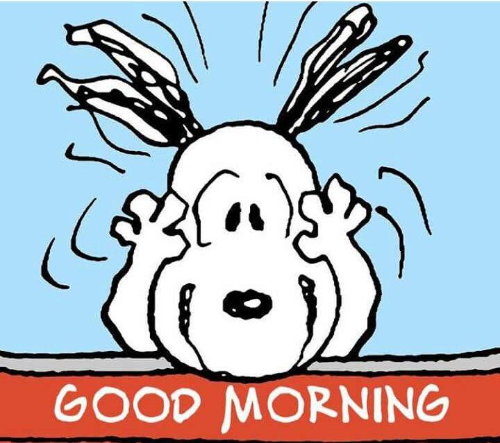 Guten Morgen Snoopy