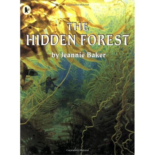 Hidden Forest by Jeannie Baker. A picture book for older kids.
