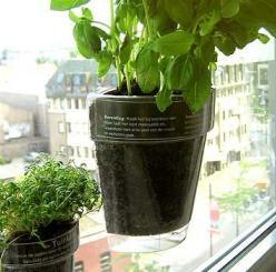 инновационные горшки для растений Windowherbs
