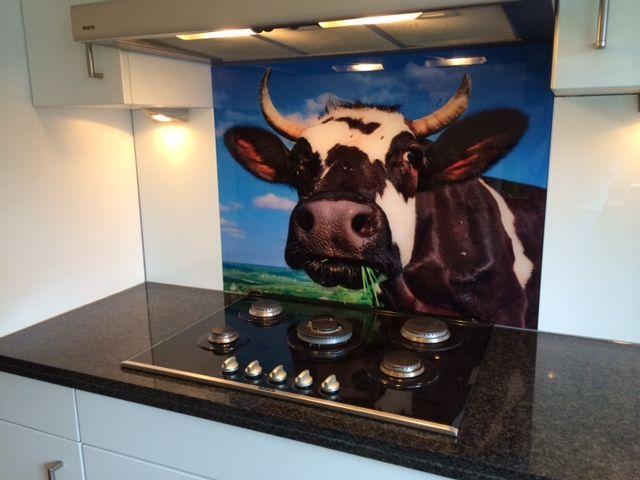 Glazen Achterwand Keuken Eindhoven : Glazen achterwand met een koe geplaatst bij de winnaar van onze