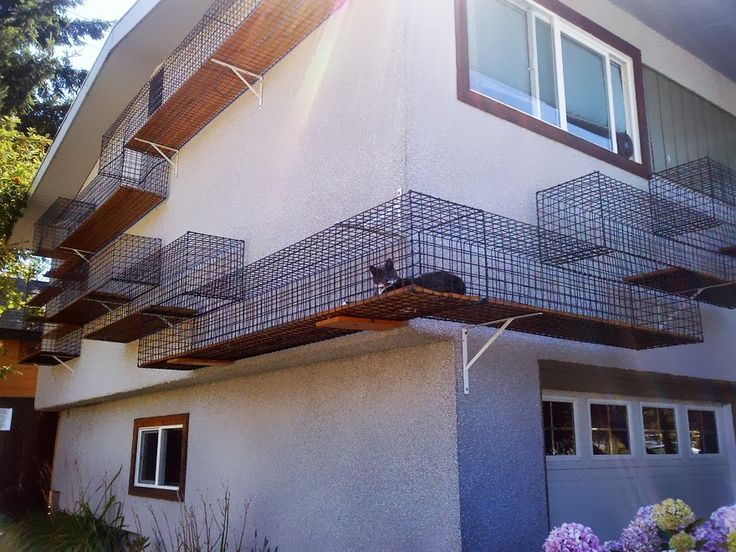 An outdoor cat jungle gym that connects with the house - Japan This is crazy I NEED to do this