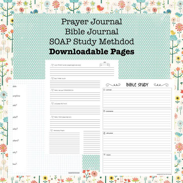 The 12 Week Journal for Mens Prayer & Devotional Bible ...