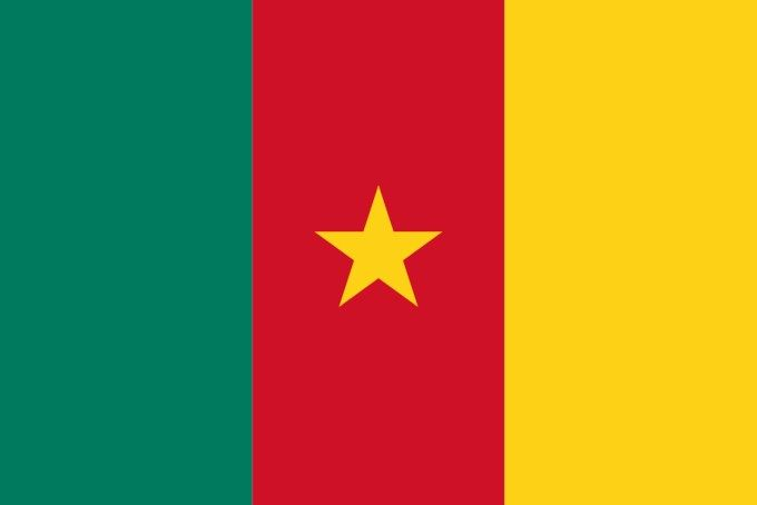 Flag of Cameroon :   This is the national flag of Cameroon, a country in Central Africa. Want to learn more? Check out these Cameroon maps.