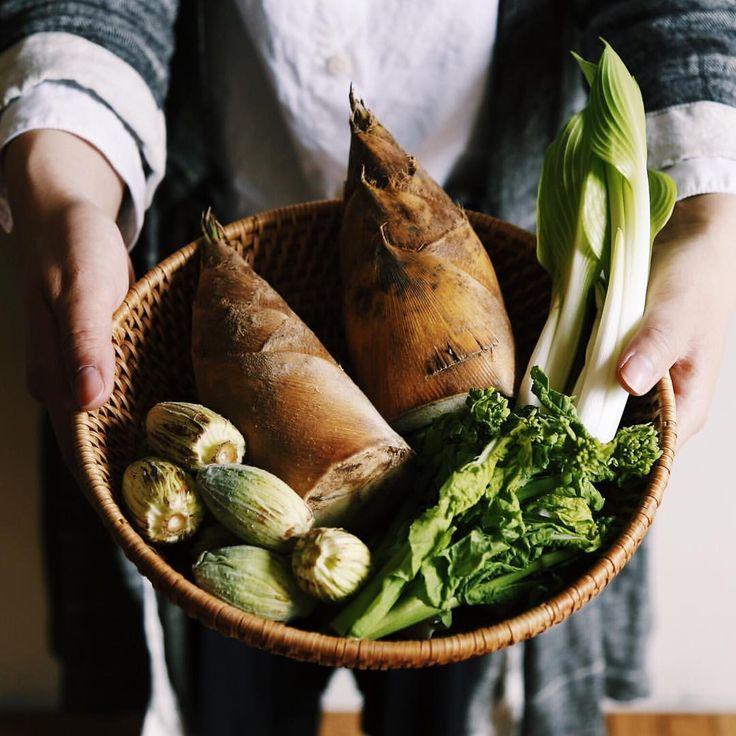 日差しもあたたか、春が届きました。 #春 #春野菜 #たけのこ #菜花 #ふきのとう #土屋鞄 #土屋鞄製造所